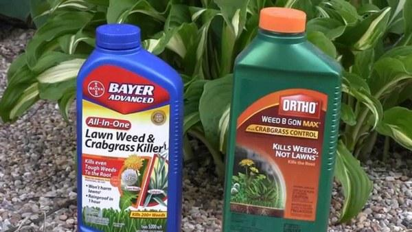 Best Grass Killer For Flower Beds